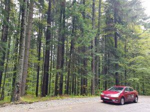 Test Toyota Corolla (19)