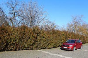 Test Dacia Sandero SCe (7)