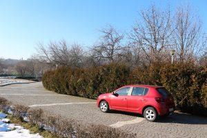 Test Dacia Sandero SCe (9)