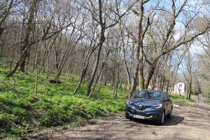 Renault Kadjar Xtronic test (18)